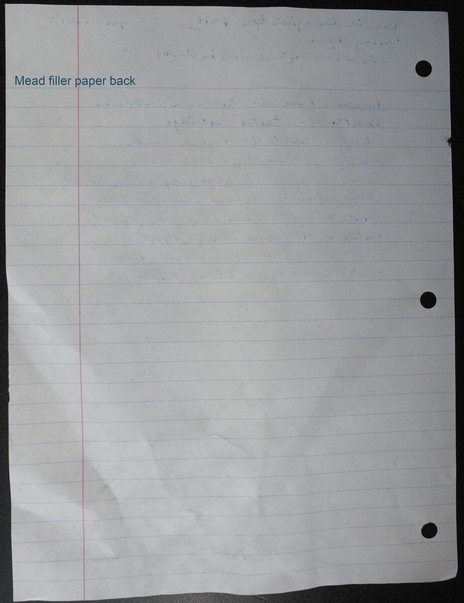 mead wide-ruled filler paper back.jpg