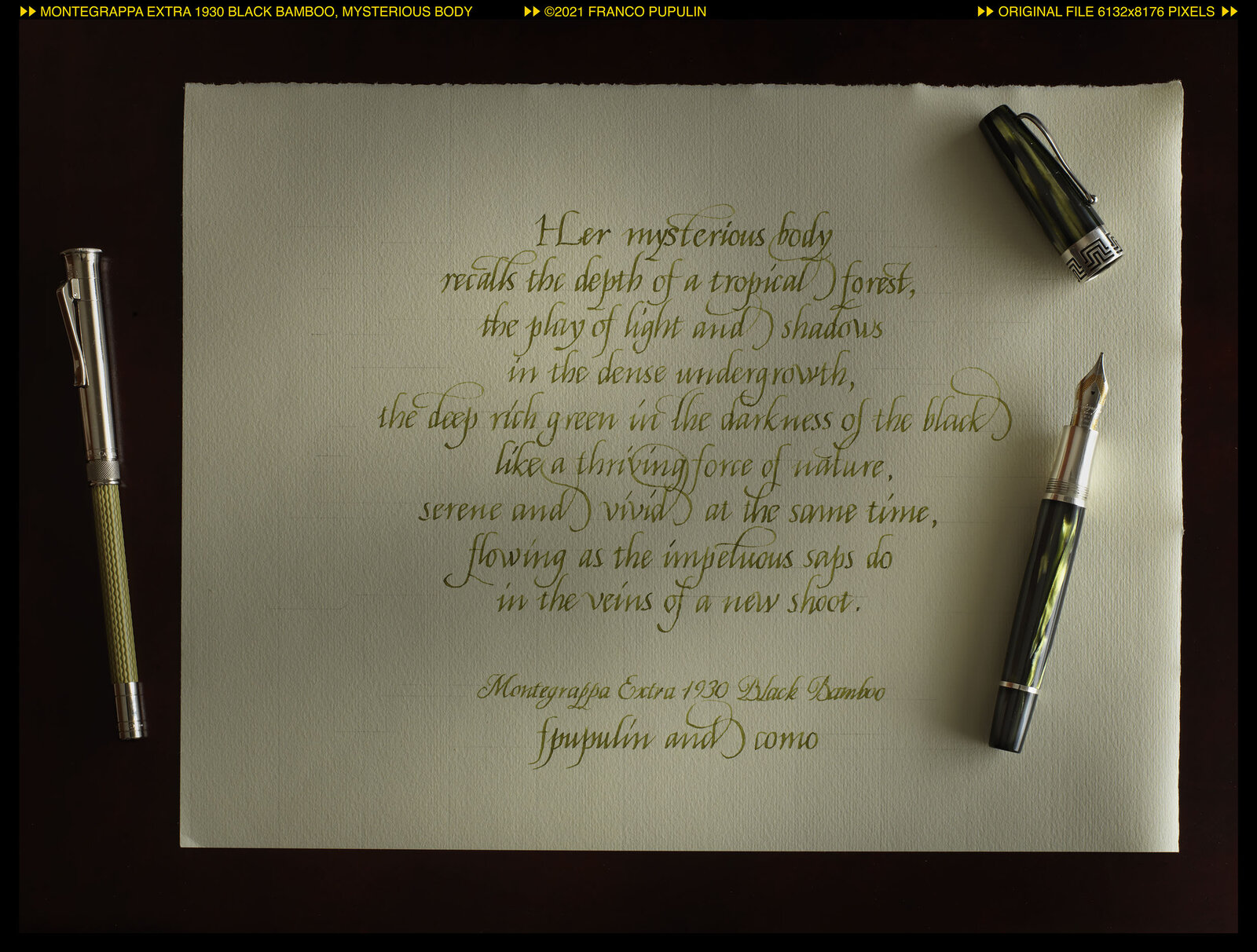 Montegrappa Extra 1930 Black Bamboo, Mysterious body ©FP.jpg