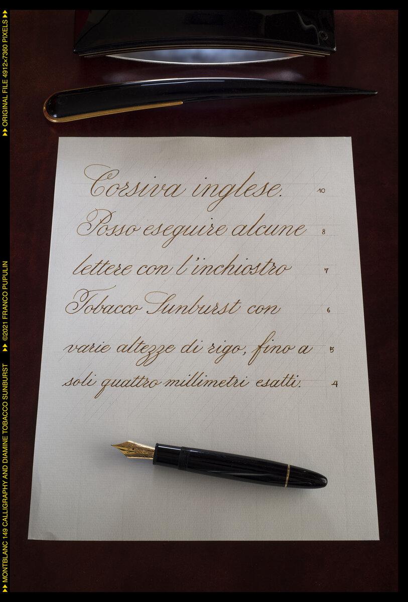 Montblanc 149 Calligraphy and Diamine Tobacco Sunburst ©FP.jpg