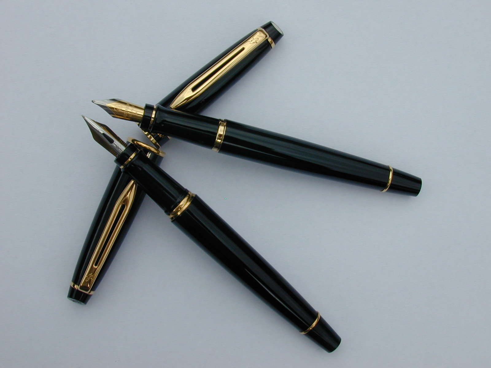 stylo waterman expert