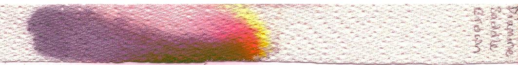 fpn_1485371503__diamine_saddle_brown.jpg