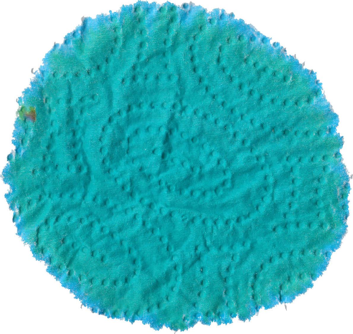 fpn_1501530823__turquoise_gvfc_rk.jpg