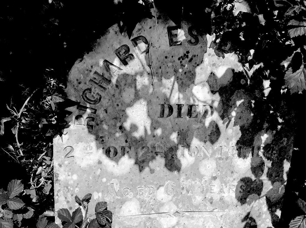 fpn_1526313586__cemetery2sm.jpg