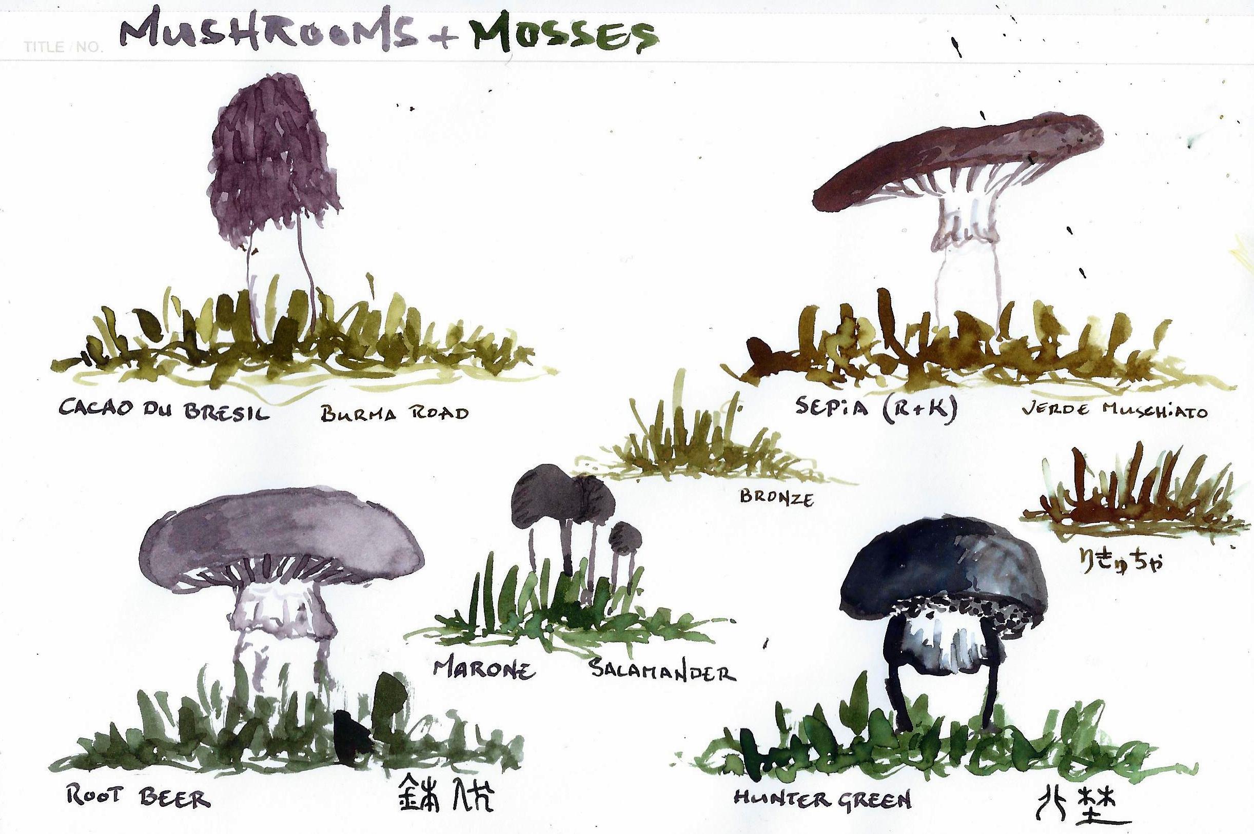 fpn_1583373798__mushrooms__moss_ii.jpg
