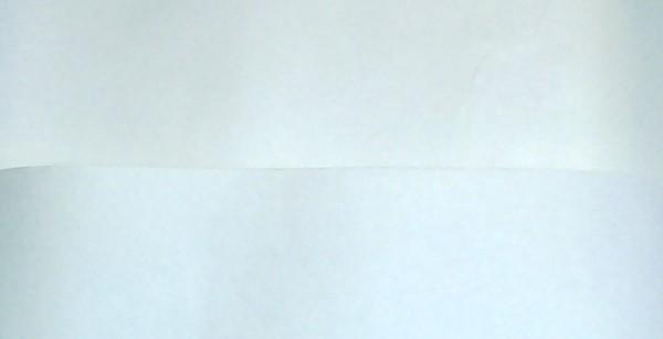 paper type 2.jpg