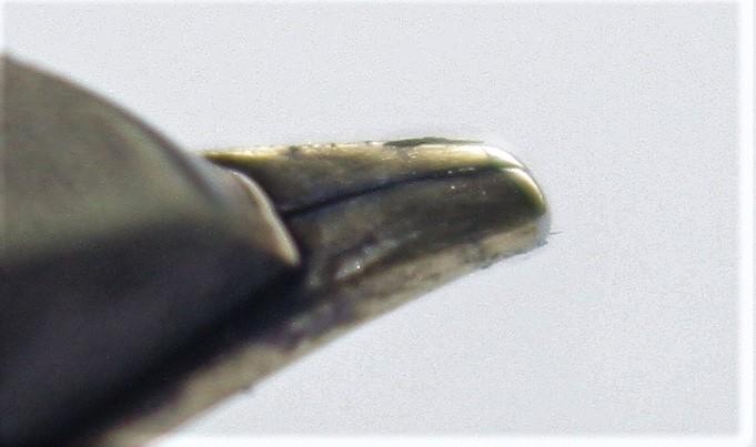 Nib  Closeup Angle.jpg