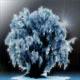 Frozenoak